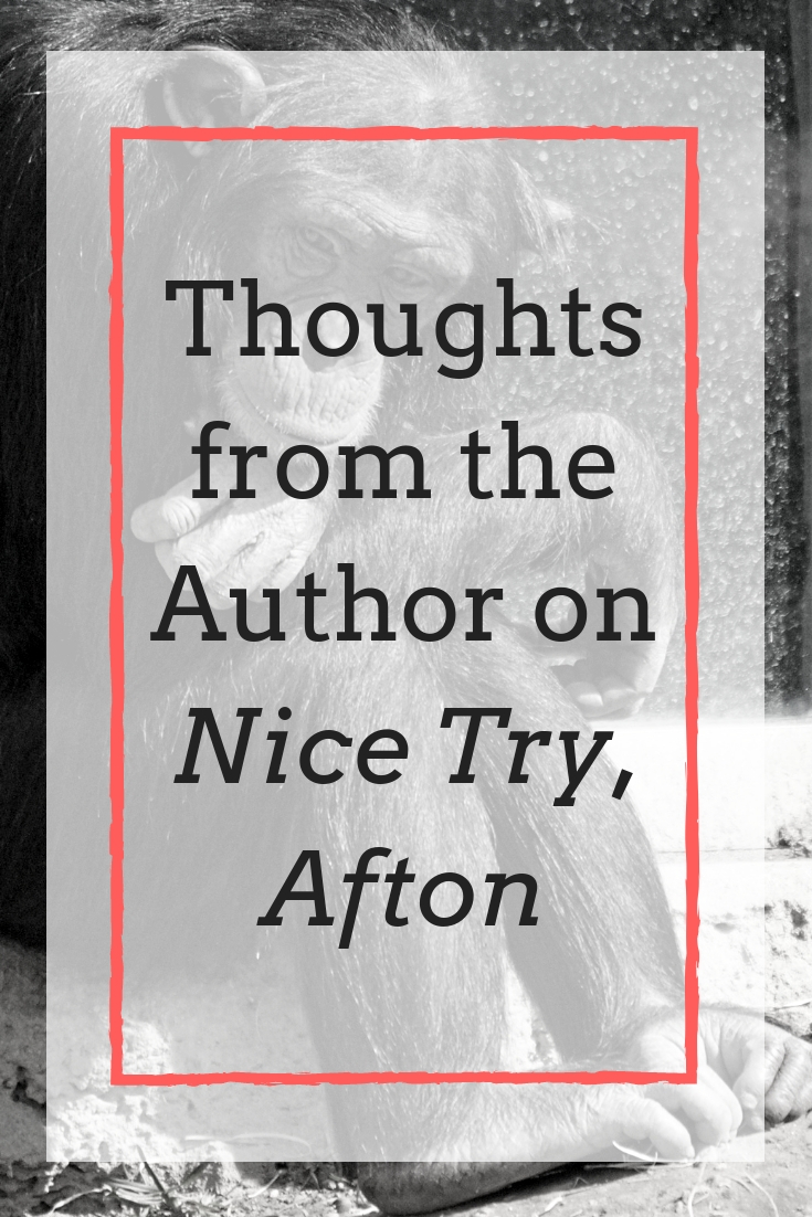"Thoughts on ""Nice Try, Afton"" from the author, Brent Jones"